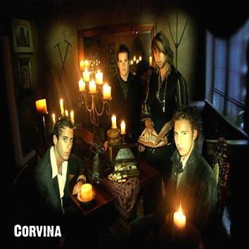 Corvina
