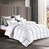 HODOMG Goose Down Alternative Comforter (King, White) - All Season Comforter - Plush Siliconized Fiberfill Duvet Insert - Reversible Duvet Insert with Corner,Super Soft,Machine Washable(106' x 90')