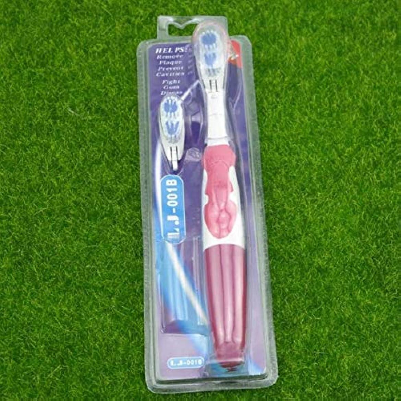 発見蘇生する不完全なプロフェッショナルケア電動歯ブラシ2ヘッド回転ブラシデンタルケア口腔衛生,C