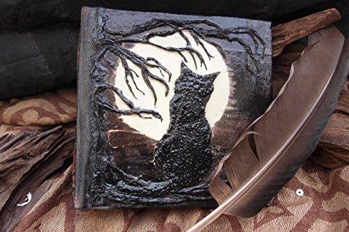 Buch der Schatten- Katze in der Nacht