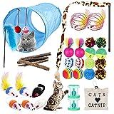 URBZUE Juguetes para Gatos, 33 Piezas Juguetes Gatos Interactivos, Túnel para Gatos, Ratones, Hierba Gatera, Varita de Plumas, Peces, Bolas y Campanas