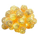 Esamconn 6M /19.8ft 40 LED Rattan Light String Ball Fairy Light String Christmas Decoration/Weddings / Birthday/Party Warm White with 3 AA Batteries Powered ((Warm White)