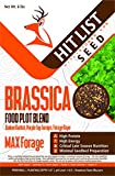 Brassica Blend Food Plot Mix Perfect Mix of Daikon Radish, Purple Top Turnips, Forage Rape Deer Food Plot Seed All Season (1/2 Acre)