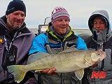 Open Water Trolling for Great Lakes Walleye