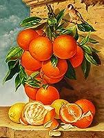 ダイヤモンド刺繡フルーツ5DDiyモザイクダイヤモンド絵画クロスステッチオレンジラインストーンクリスマス-50x70cm-フルスクエアドリル