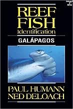 fish of the galapagos