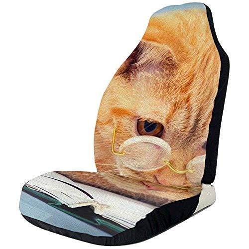 Dem Boswell Katzenbücher Staaten Autositzbezüge Fahrzeugsitzschutz Autobezüge
