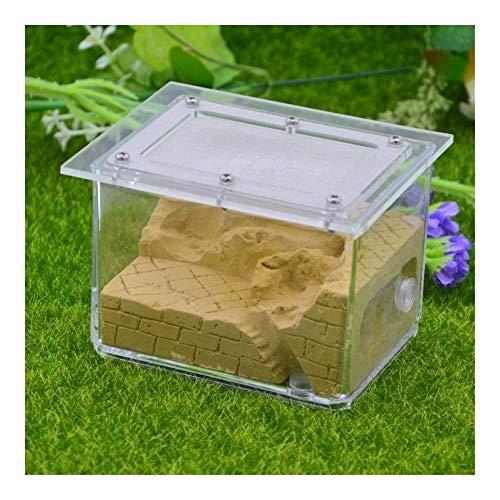 Large Size Acryl Nest Ant Zucht Nest Ant Farm Castle Acryl Box, großes Geschenk for Kinder und Erwachsene, Studie von Ant Beh (Color : B, Size : -)