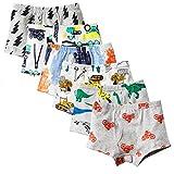 Toddler Boy Underwears