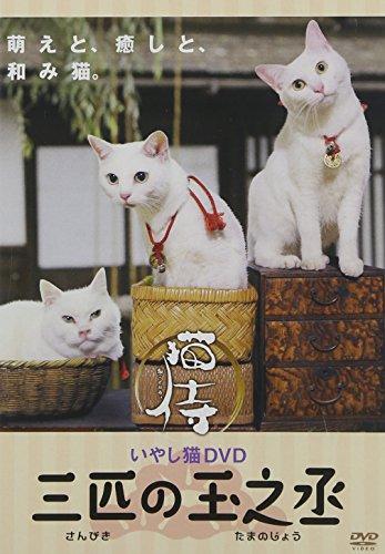 AMGエンタテインメント『いやし猫DVD 猫侍 三匹の玉之丞』