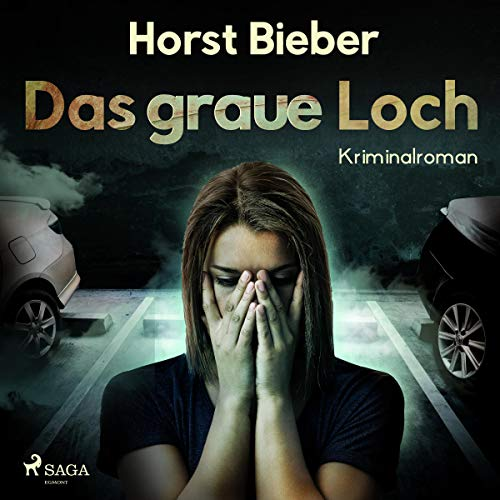 Das graue Loch audiobook cover art