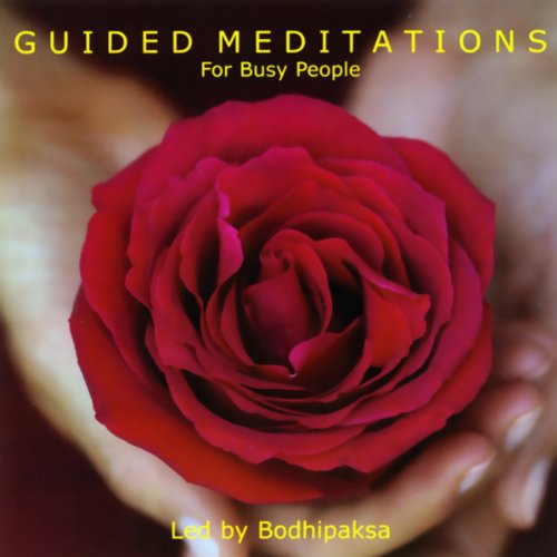 Guided Meditations for Busy People audiobook cover art