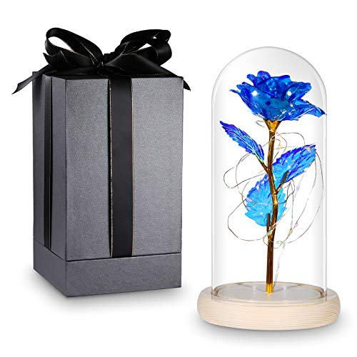 VILUX Enchanted Rose, Forever Rose, Unique Gifts for Women Mom Girlfriend Friends, Glass Rose, Eternal Fake Flower Roses for Valentine's Day Mother's Day, Anniversary Birthday Christmas Wedding