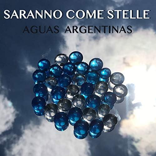 Aguas Argentinas, Marcos Cifuentes & Emiliano Alvarez