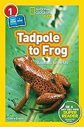 Pet Books for Little Learners - Pocket of Preschool