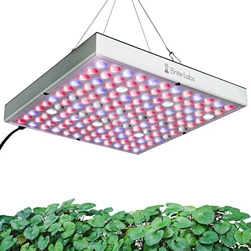 Brite Labs Lámpara de Planta en Crecimiento - Cultiva Plantas Más Saludables en Interiores - LED Grow Light - Lamparas LED Cultivo Interior - Lámpara de Cultivo Bombilla Crecimiento y Floracion