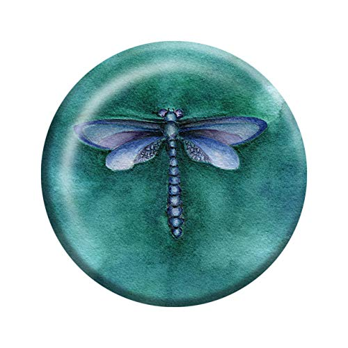 """Rachel Tribble - Dragonfly Crystal Glass Paperweight, Paper Weights Decorative, 3"""" X 3"""" Paperweight for Office Desk, Coffee Table, Animal Paperweight, Valentine Gift for Him/Her"""
