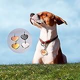 HOUSWEETY Herz Edelstahl Personalisiert Haustier ID Tag Hund Tag Hundemarke Anhaenger MIT Gravur Service,Schwarz - 3