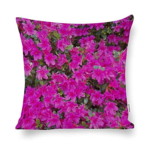 """Little Pink Rhododendrons Floral Photo Cotton Linen Blend Throw Pillow Covers Case Cushion Pillowcase with Hidden Zipper Closure for Sofa Bench Bed Home Decor 20""""x20"""""""
