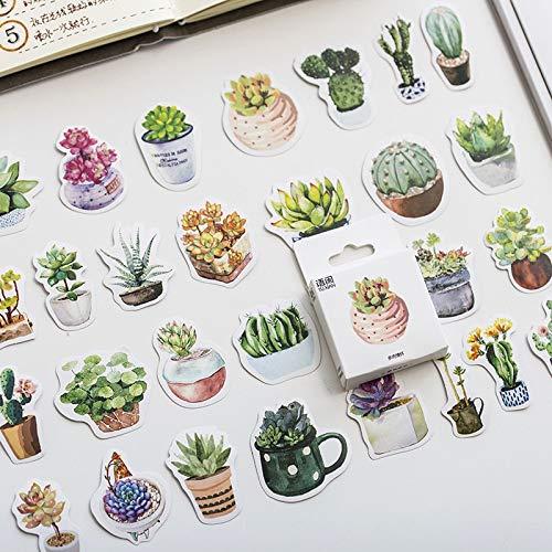Boxed Stickers Gefühle von Sukkulentenstickers Kreative süße Cartoon Pflanze Sticker Flakes Scrapbooking Geschenk Mädchen 50pcs