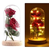 Houkiper La Bella y la Bestia Kit de Rosas, Elegante Cúpula de Cristal con Base Pino Luces LED,Beaut...