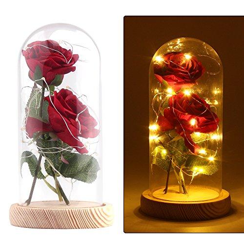 """☑【Red Kit de rosas rojas """"La bella y la bestia""""】Incluye 2 piezas Red Silk Rose, 20 Leds Strip Light, 1 * Glass Lampshade, crea una atmósfera romántica para el amante. Construye 2 piezas de seda artificial rosa, 18cm de longitud, solo ponlo en el cris..."""
