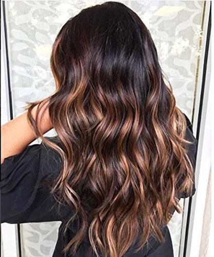 FENJUN Brazilian Body Wave Ombre Lace Front Wig Human Hair Pre plucked with Baby Hair 1B/33#/30# Highlight Color Virgin Hair Wigs 150% Density 16 Inch Wet and Wavy Wigs for Women Free Parting