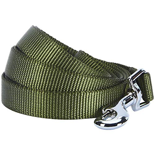 Blueberry Pet Essentials 21 Colors Durable Classic Dog Leash 5 ft x 3/4', Military Green, Medium, Basic Nylon Leashes for Dogs