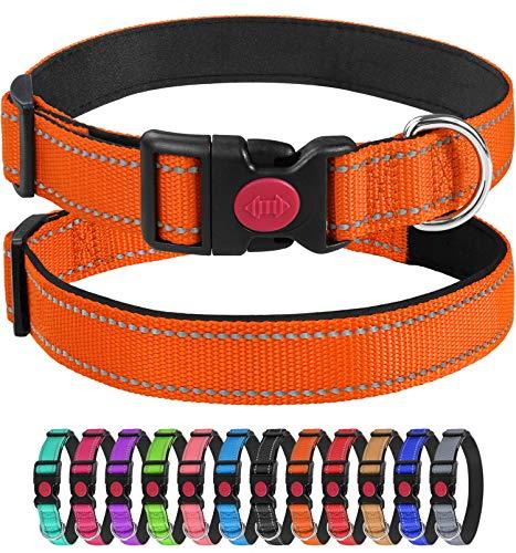 Joytale Reflektierend Hundehalsband,Einstellbare für Training Halsband aus Nylon mit Gepolstertem für Mittel Hunde,Orange,L