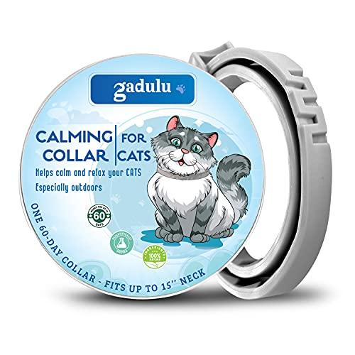 CHUWPI Collar calmante para gatos – Mantén al gato seguro y feliz – sin dolor, sin estrés – 15 pulgadas para todos los gatos – Nueva versión Calming Collar.