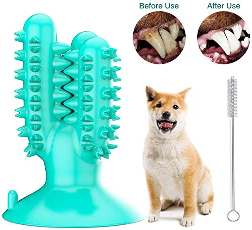Alittle Cepillo de Dientes para Masticar Perros, Palillo de Cepillo de Dientes para Perros, Cuidado Dental Cepillado Juguetes para Masticar Masaje eficaz para la Limpieza Perros medianos de 40-80 LB