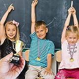 Zoom IMG-1 12 trofei e medaglie premi