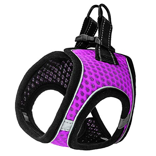PAWDAY Dog Harness Step-in Air Pet Harness All Weather Soft Touch Mesh Vest Harness No Pull & No Choke and Escapeproof Dog Vest for Puppies, Small Medium Dogs and Large Cats