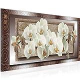 Bilder Blumen Orchidee Wandbild Vlies - Leinwand Bild XXL