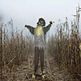 Haunted Hill Farm Life-Size Animatronic Scarecrow, Indoor/Outdoor, Laughing, Poseable, Battery-Operated, HHSCR-2FLSA Halloween Decoration, Color 2