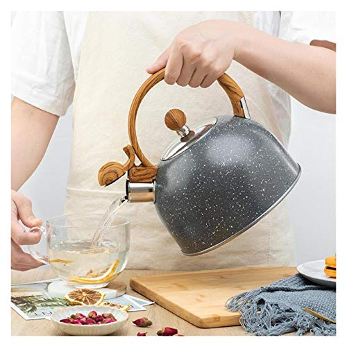 Kettle 2/2.5/2.8/3L Stainless Steel Whistling Tea Kettle Pot Water Bottle With Heat-Proof Handle Kitchen Tools Best Gift For Tea Lover (Color : 2.5L)