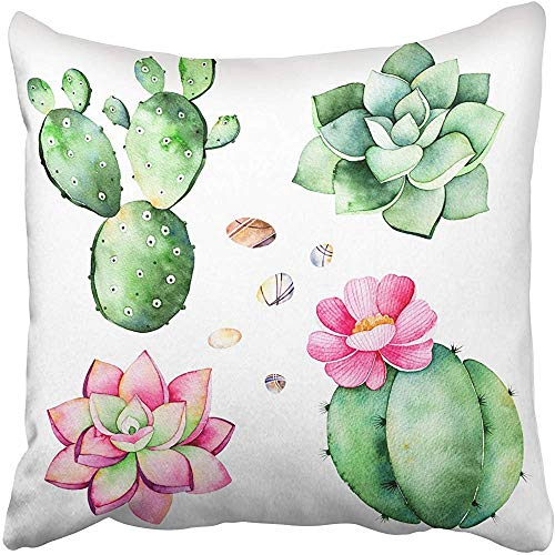 SSHELEY Kissenbezüge Cases Collection with Succulents Pflanzen Pebble Stones Cactus Handbemalte Iclipart World Kissenbezüge Case Cover Cushion