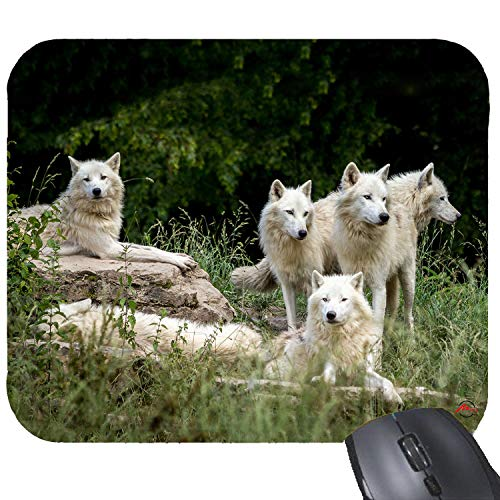 ZMvise Wolf Wild Animal Pack Mouse Pad Rubber Gaming Mousepad 9x7.5 Inches