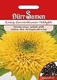 Dürr-Samen Zwerg-Sonnenblumen Teddybär
