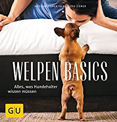 Welpen-Basics: Alles, was Hundehalter wissen müssen
