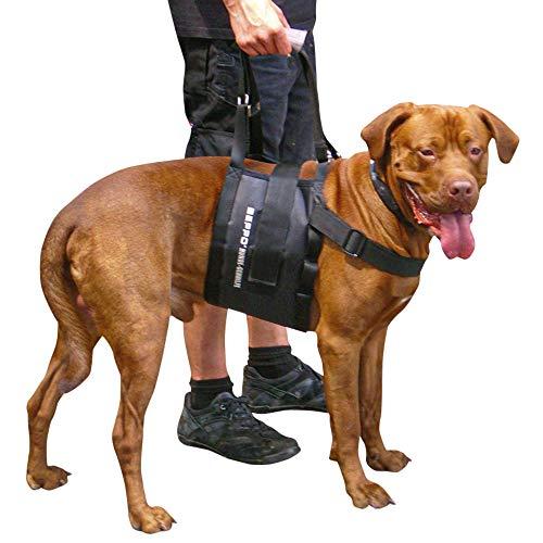 Schecker Beppo® Hunde - Gehhilfe - Tragehilfe - für mittelgroße oder große Hunde geeignet - Unisex