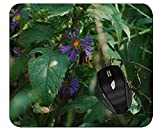 Printed Mouse Pad Plant Flower Purple Wildflower Mouse Pad with Stitched Edges