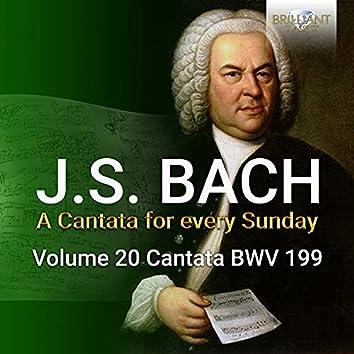 J.S. Bach: Mein Herze schwimmt im Blut, BWV 199