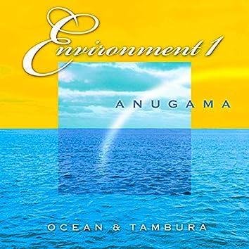 Environment 1 (Ocean & Tambura)
