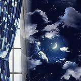 [窓美人] 1級遮光 デザインカーテン 「セレナーデ」 カーテン 2枚 + アジャスターフック + カーテンタッセル 夜空柄 幅100×丈178cm