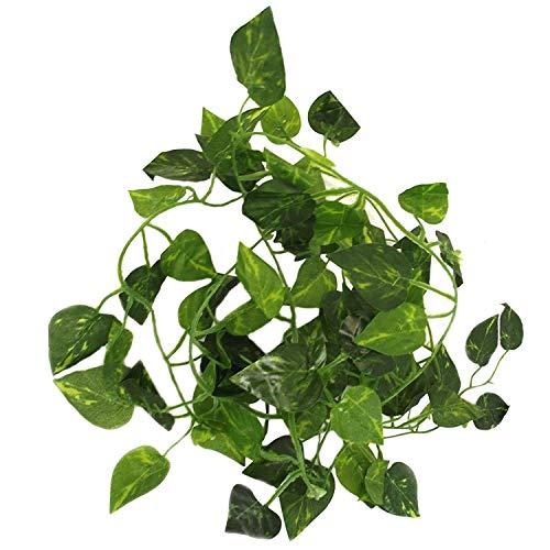 JIANZHENKEJI 80 inch/ 200 cm Fake Foliage Garland Leaves Decor Artificial Greenery Ivy Vine Plant Home (Scindapsus)