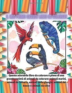 Il mio primo grande libro da colorare - Questo adorabile libro da colorare è pieno di una grande varietà di animali da col...