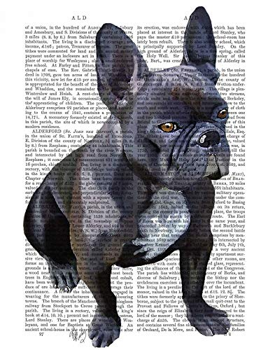 Feeling at home CANVAS-FRAMED-with-AMERICAN-BOX-French-Bulldog-Plain-Animals-wall-decore-on-wood-frame-Vertical-27x21_in