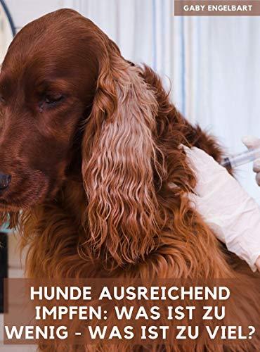 Hunde ausreichend impfen: Was ist zu wenig und was ist zu viel? Dieser Ratgeber informiert ohne Angst zu machen, wogegen unsere Hunde geimpft werden und gibt Anregungen für einen neuen Umgang mit die