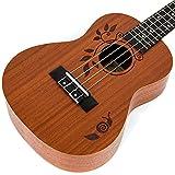 Immagine 2 ukulele da concerto ukkele in
